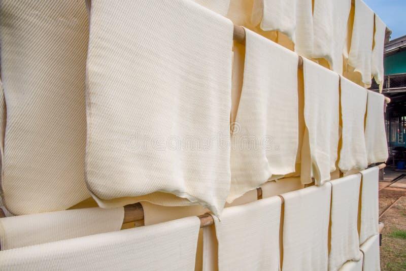 Production en caoutchouc de feuille, processus à avec le séchage solaire photo stock