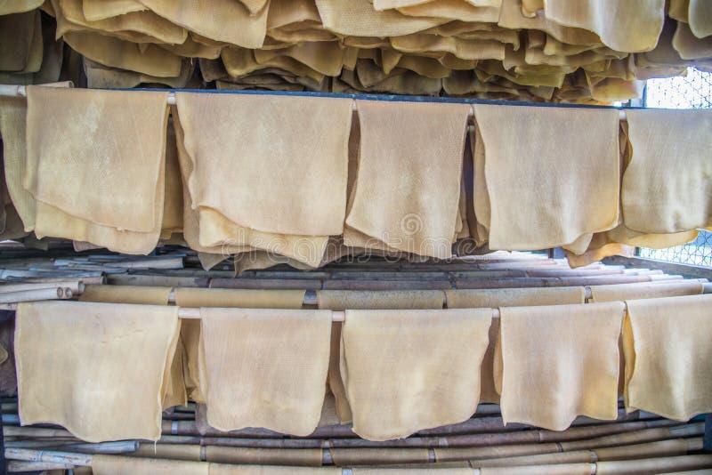 Production en caoutchouc de feuille, processus à sécher avec l'énergie solaire photo stock