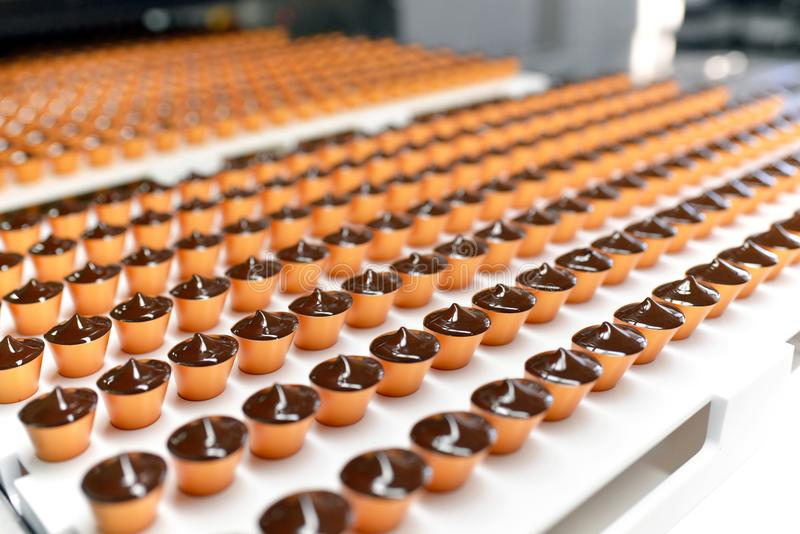 Production of pralines in a factory for the food industry - auto. Matic conveyor belt with chocolate royalty free stock photo