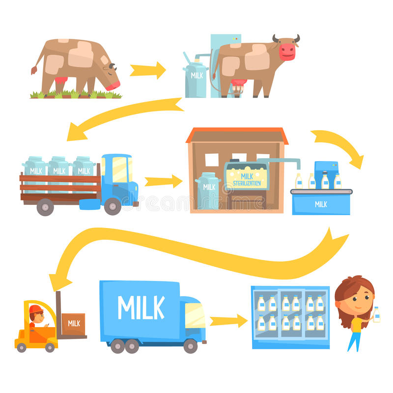 Production and processing milk stages set of vector Illustrations royalty free illustration