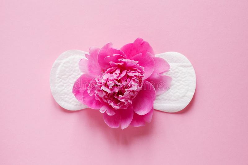 Producto de higiene íntimo de las mujeres, cojín sanitario y flor fresca hermosa de la peonía en fondo rosado fotografía de archivo