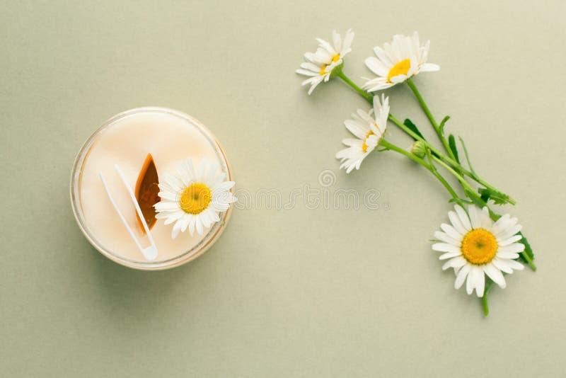 productos de belleza Planta-basados Los cojines de los ojos con el extracto herbario, manzanilla florecen, concepto de producto o foto de archivo