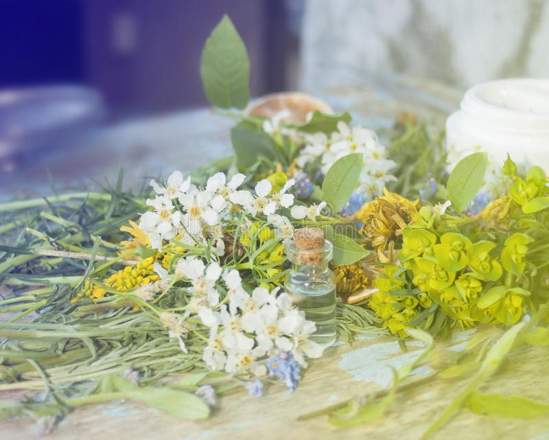 Productos de Eco Flores y plantas, aceites aromáticos orgánicos selec imagenes de archivo