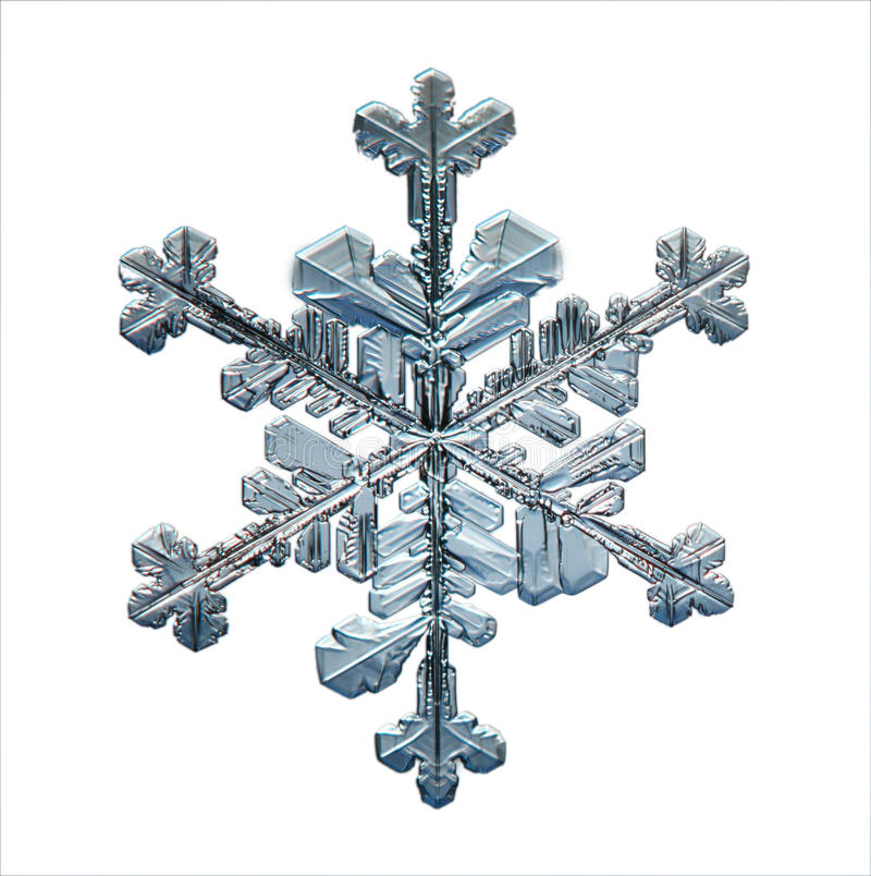 Productos naturales naturales de la macro del copo de nieve