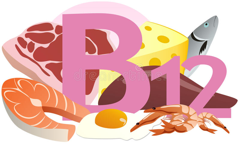 Products containing vitamin B12 stock illustration