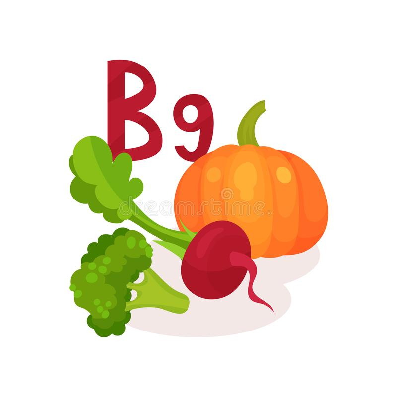 Products containing vitamin B9 folic acid . Fresh beetroot, pumpkin and broccoli. Organic and healthy food. Flat vector royalty free illustration