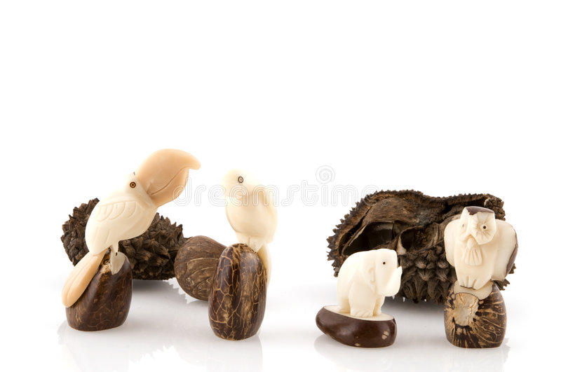 Products from tagua stock photos
