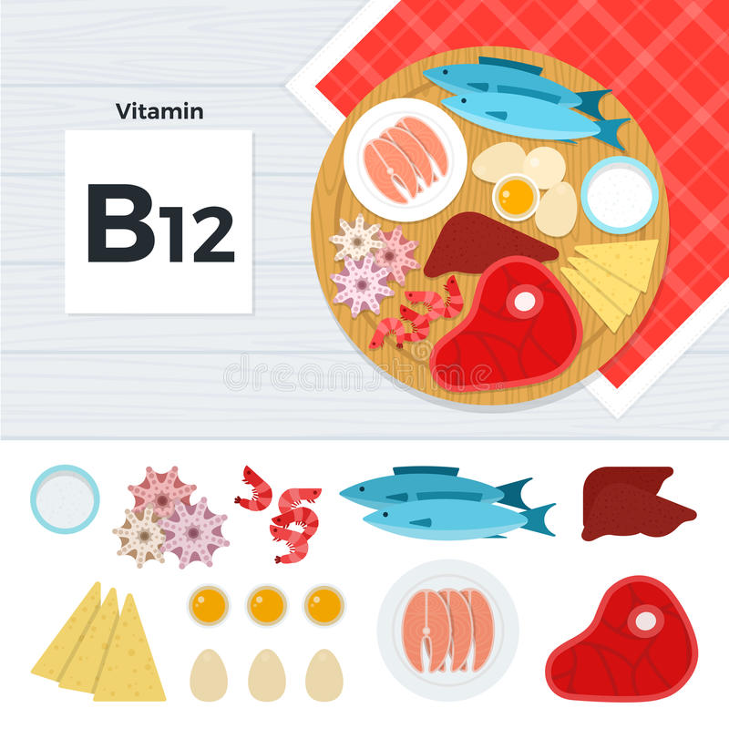 Products with vitamin B12 vector illustration