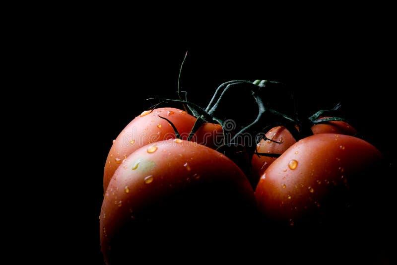 Produit-légumes frais de vegetables photographie stock