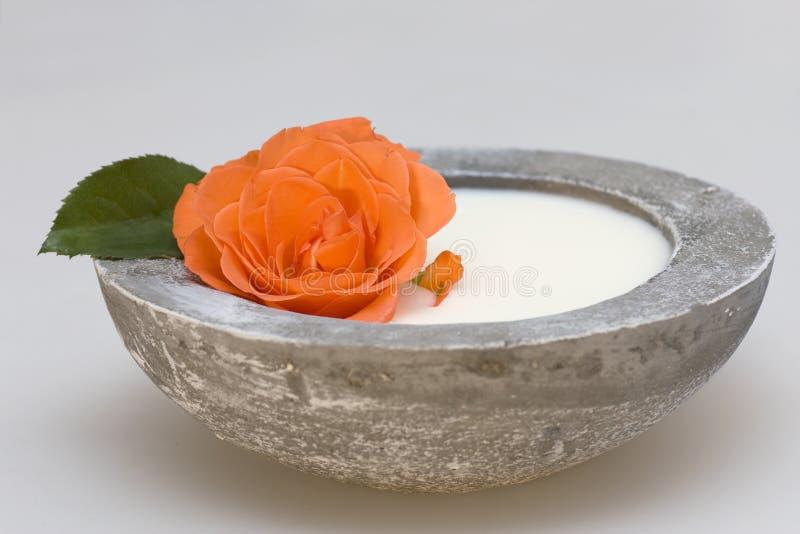 Produits de soin de santé avec une rose photos stock