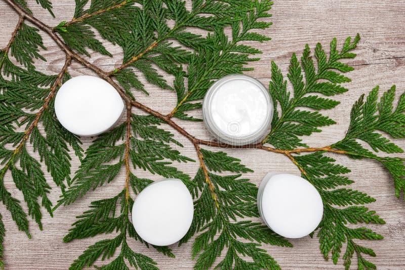 Produits de soin pour la peau organiques avec les feuilles vertes photos stock