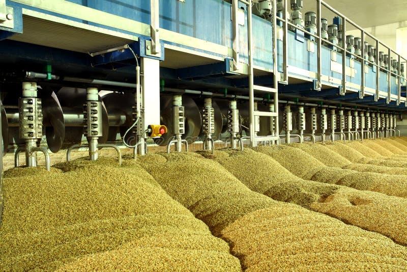 Produkcja przemysłowa słód Ogromna bednia obrazy stock