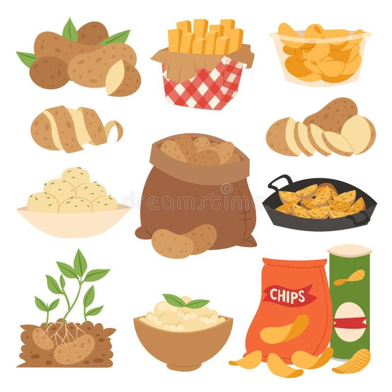 Produkter för potatis för vektorillustrationgrönsak skivade mogen mat kokat låtit småkoka ångat rått mål för småfiskar vektor illustrationer