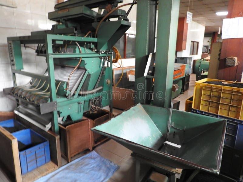 Produktion av att bearbeta teblad Sri Lanka royaltyfria foton