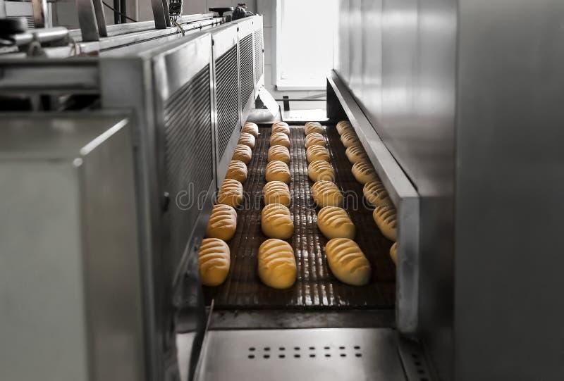 Produktion av bröd på bagerit arkivfoto