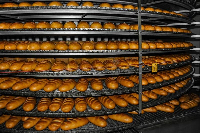 Produktion av bröd på bagerit royaltyfri fotografi