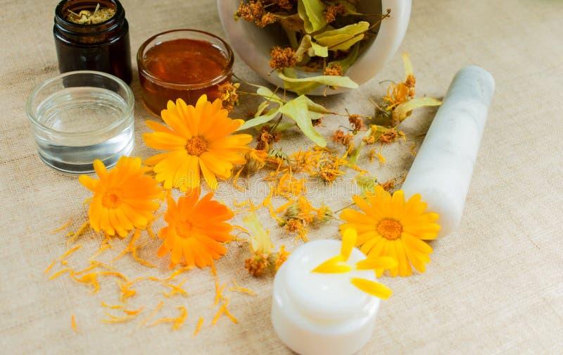 Produktion av naturliga skönhetsmedel Medicinska blommor av calendulaen, kamomillen, mintkaramellen och växt- tinktur medicinal ? royaltyfri foto