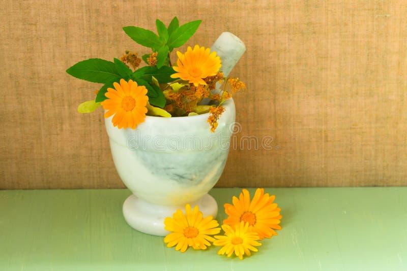 Produktion der Naturkosmetik Medizinische Blumen von Calendula, von Kamille, von Minze und von Kräutertinktur Medizinische Kr?ute stockfotografie