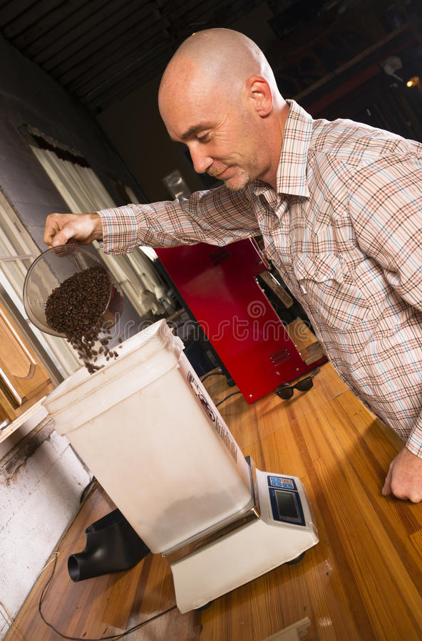 Produktionhusägare som väger grillat kaffe för att förpacka royaltyfri fotografi