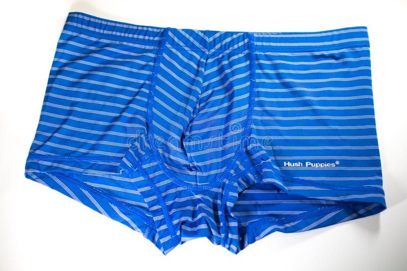Produto disparado de Hush Puppies Innerwear imagens de stock