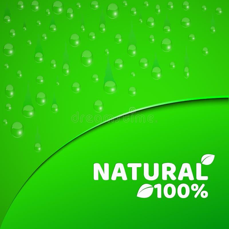 produto natural de 100 por cento Fundo verde, molde para seus projetos Gotas realísticas da água Tema do vegetarianismo redondo ilustração do vetor
