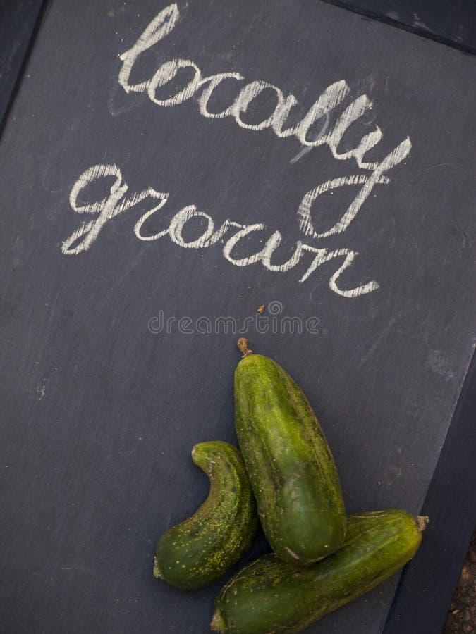 Download Produto-vegetais Frescos De Vegetables Imagem de Stock - Imagem de nutrition, pickle: 26503597