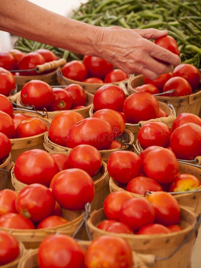 Download Produto-vegetais Frescos De Vegetables Foto de Stock - Imagem de fazendeiros, verde: 26503816