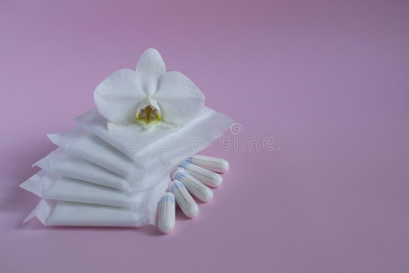 Produtos de higiene do ` s das mulheres fotografia de stock