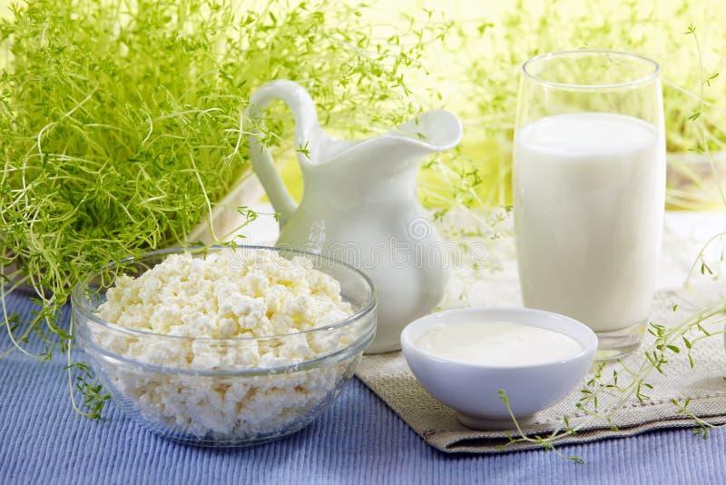 Produtos de leite frescos imagens de stock royalty free