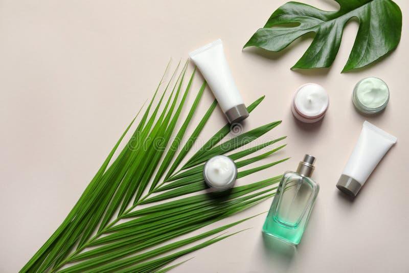 Produtos diferentes do cosmético dos cuidados com a pele fotografia de stock