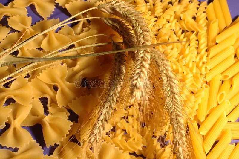 Produtos do trigo imagem de stock