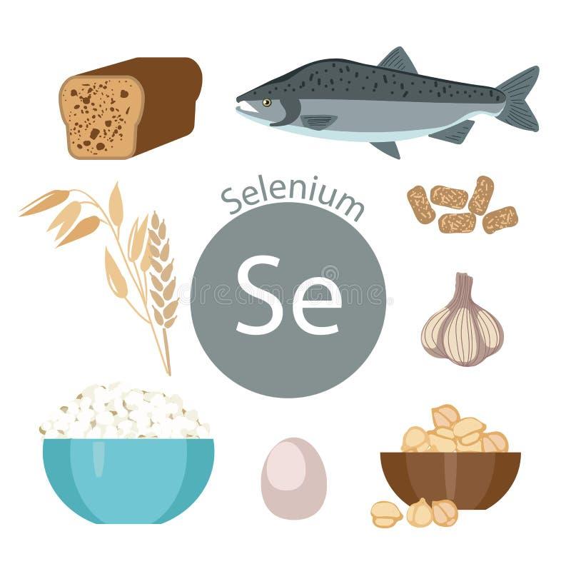 Produtos ricos com selênio Um grupo de alimentos orgânicos orgânicos com um índice mineral alto ilustração do vetor