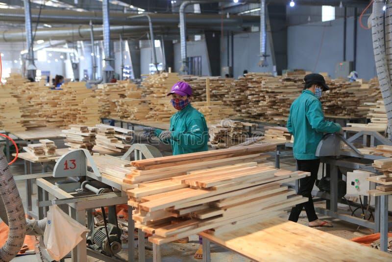 Produzione del pannello dell'acacia nel Vietnam fotografia stock libera da diritti