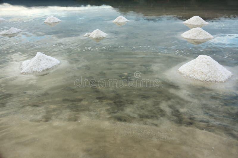 Produzione di sale commestibile, spezie fotografia stock