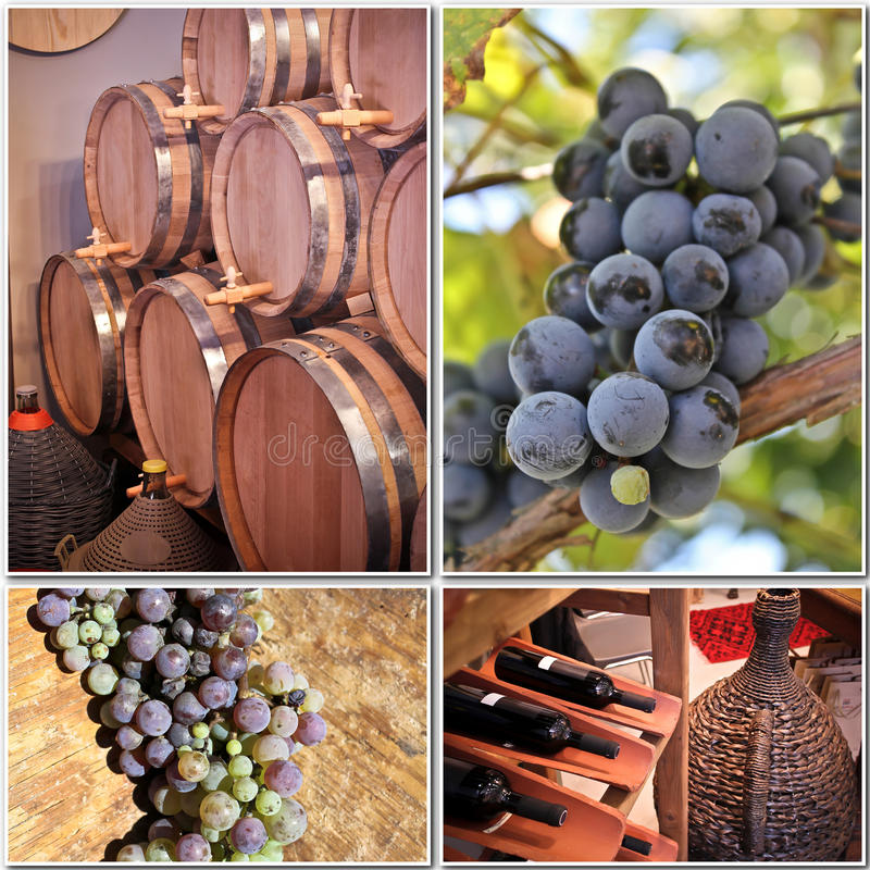 Produzione vinicola   immagini stock libere da diritti