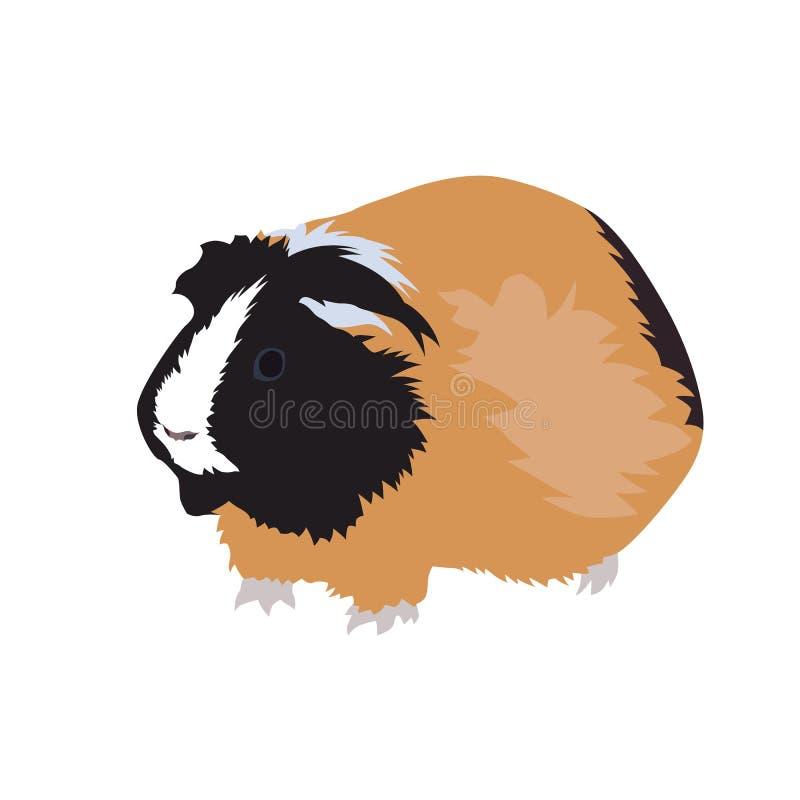 Proefkonijn, huisdier Geïsoleerdee vectorillustratie stock illustratie