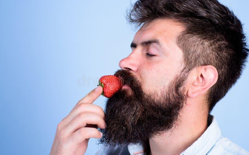 Proeft zo de zomer Aardbei gezonde snack Mensen knappe hipster met lange baard die aardbei eten hipster stock fotografie