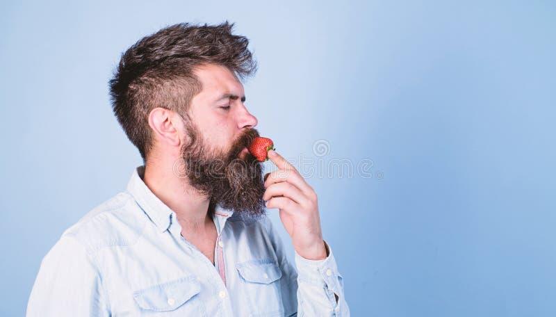 Proeft zo de zomer Mensen knappe hipster met lange baard die aardbei eten Hipster geniet van sappig rijp rood royalty-vrije stock foto's