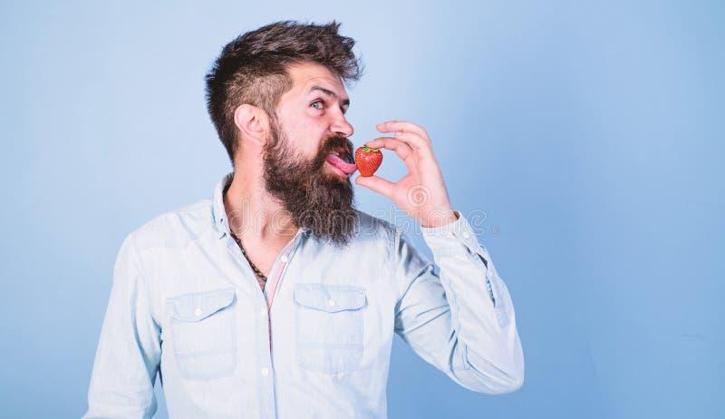 Proeft zo de zomer Mensen knappe hipster met lange baard die aardbeitong likken Hipster geniet van sappig rijp rood royalty-vrije stock afbeelding