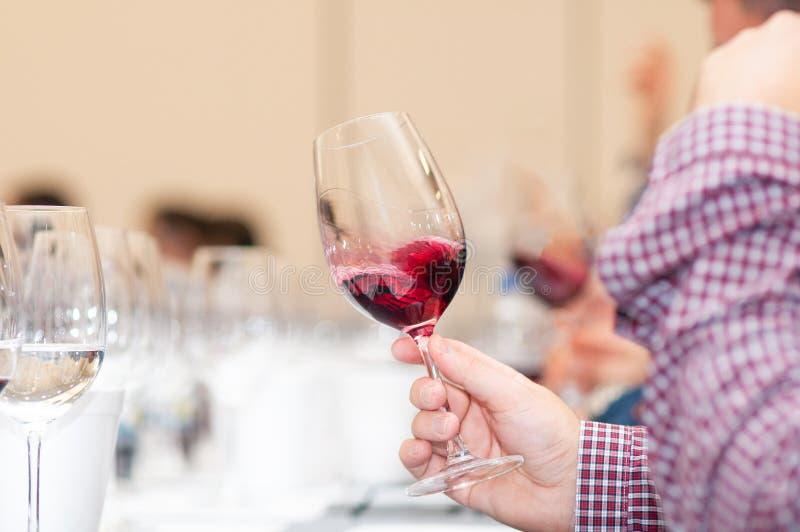 Proevende rode wijn en vele anderen royalty-vrije stock fotografie