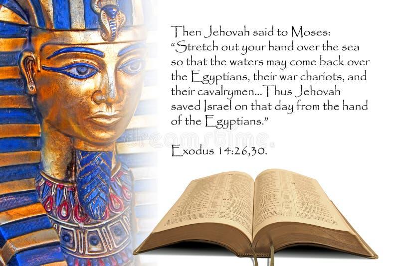 Profecía Egipto de la biblia ilustración del vector