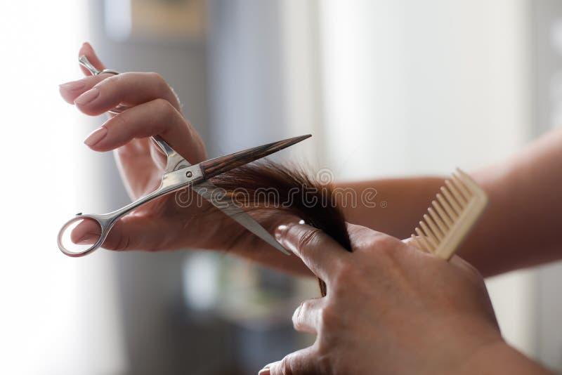 Profesjonalista żyłuje włosy z narzędziami w salonie obrazy royalty free