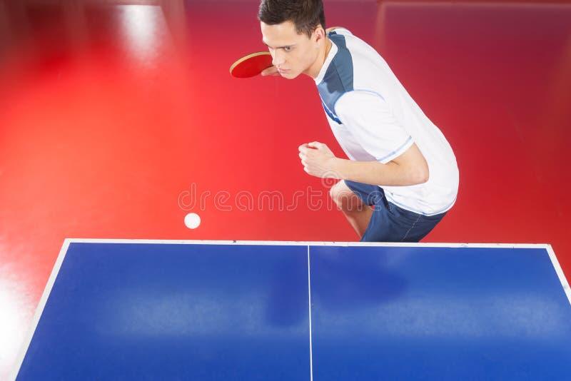 Profesjonalisty stołowy gracz w tenisa. Odgórny widok ufni potomstwa ja zdjęcie stock