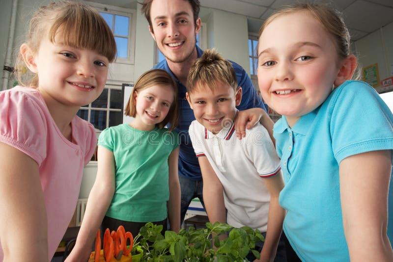 Profesor con los niños que aprenden sobre las plantas fotos de archivo libres de regalías