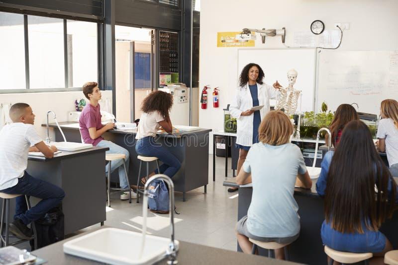 Profesor que dirige alumnos en una lección de la ciencia de la High School secundaria imagen de archivo libre de regalías