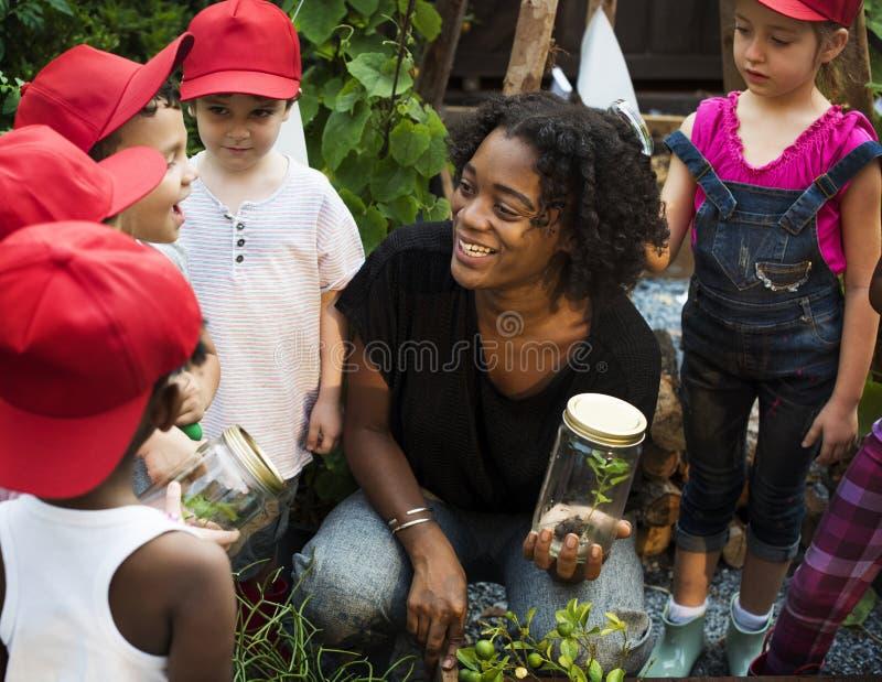 Profesor y niños que se divierten que aprende sobre las plantas fotos de archivo