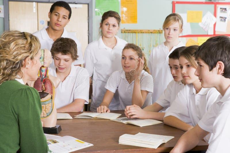professeur de Sciences d'écoliers de classe image libre de droits
