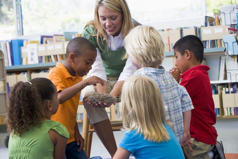 Professeur et enfants regardant l'emboîtement de l'oiseau photos stock