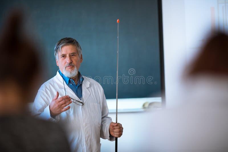 Professeur supérieur de chimie donnant une conférence image libre de droits