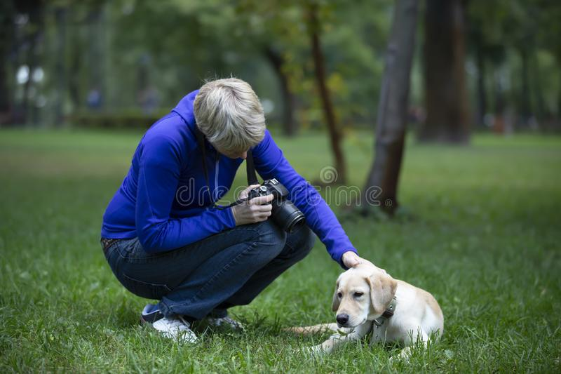 Professional adult photographer taking dog photo. Professional photographer. Portrait of confident adult woman holding camera in hands and taking photo of the stock image